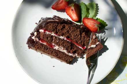 suklaakakkua4