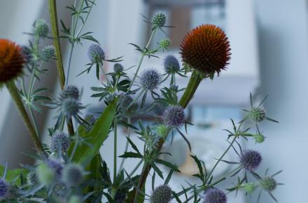 puutarhastailoa2
