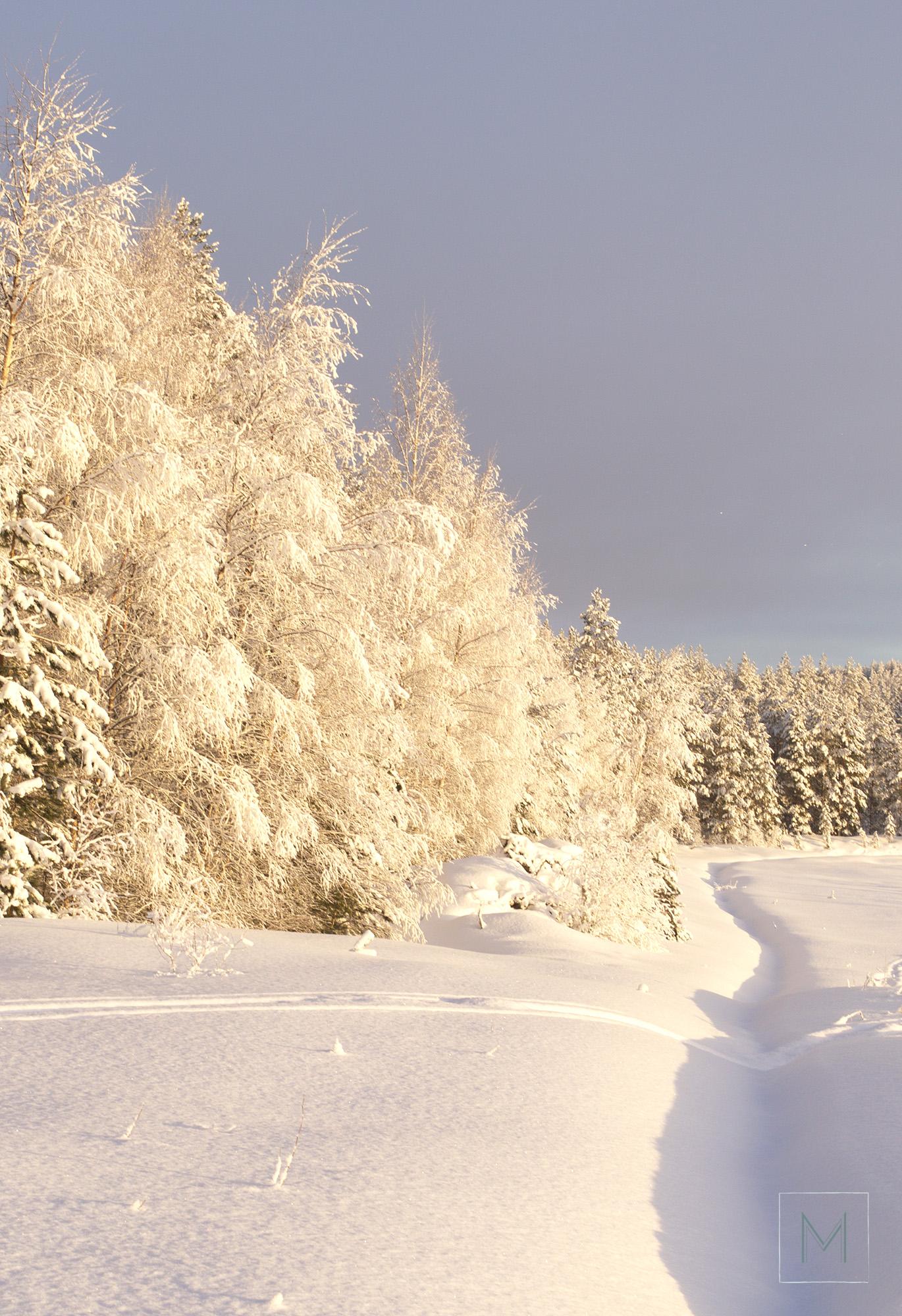talvea3