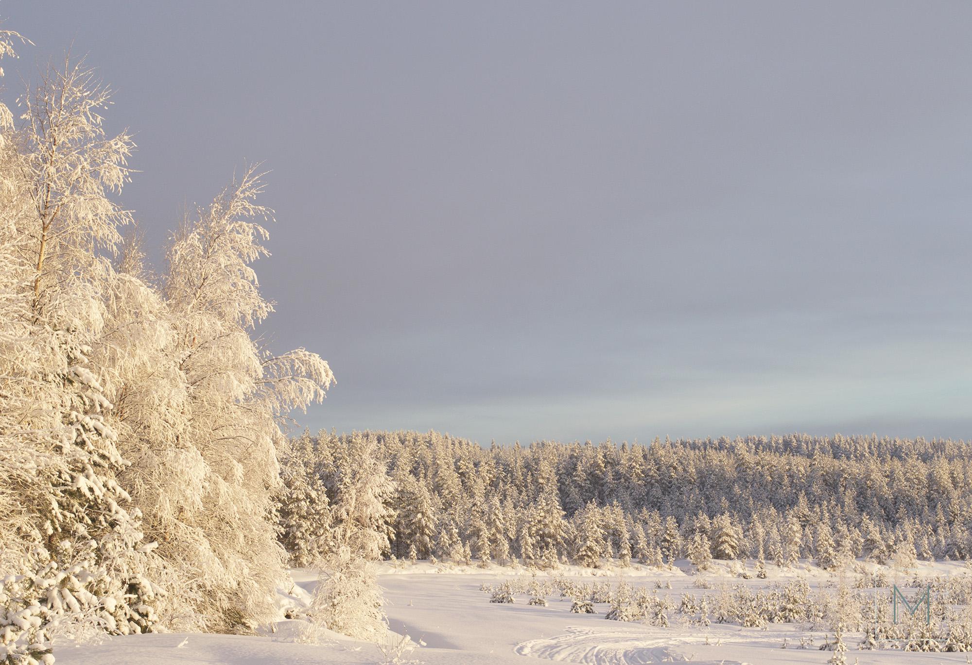 talvea4